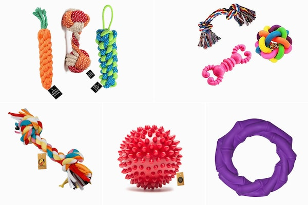 Chew Toys For Dogs: Promote Your Furry Friend's Dental Health