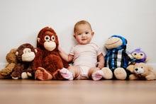 Adorable Animal Plush Toys For Kids