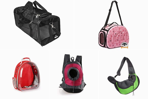 Pet Carrier Bags For Your Convenience While Travelling