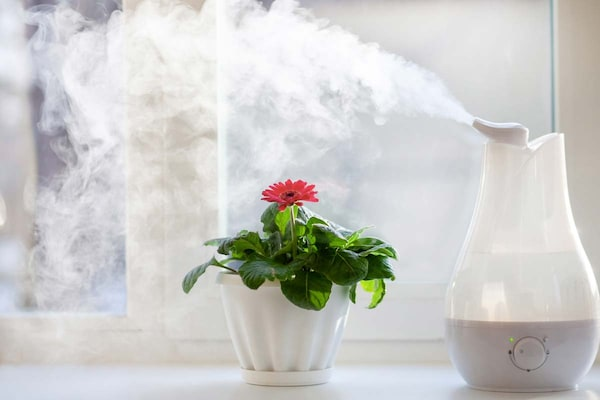 Best Humidifiers: Buying Guide, Health Benefits, And Drawbacks