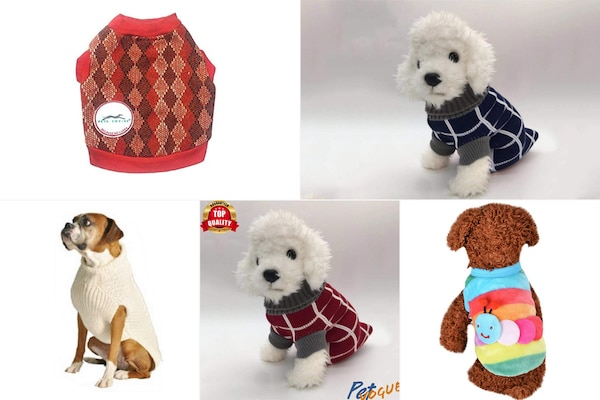 Best Sweaters For Dogs