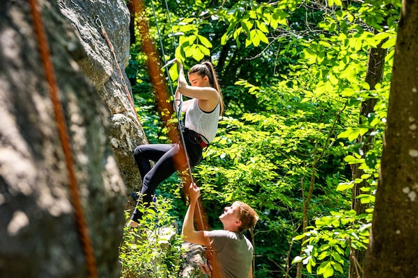 Best Climbing Ropes: Scale New Heights Of Adventure