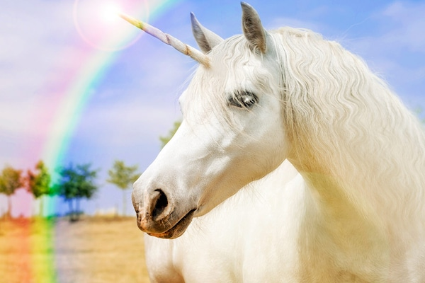 Best Gifts For Unicorn Lovers: Celebrating A Colorful Legend