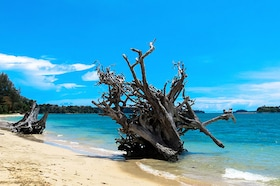Best Time to Visit Andaman in 2018