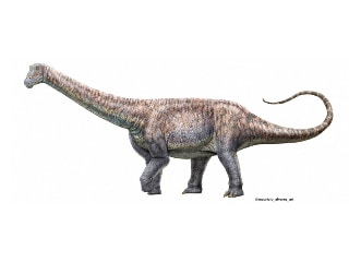 New Species of Plant-Eating Dinosaur Discovered in World's Driest Desert in Chile