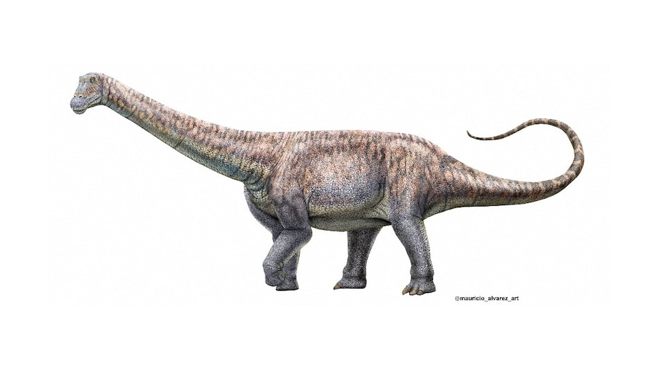 Recreating Dinosaurs From DNA: Here Is What Scientists Think About Jurassic Park