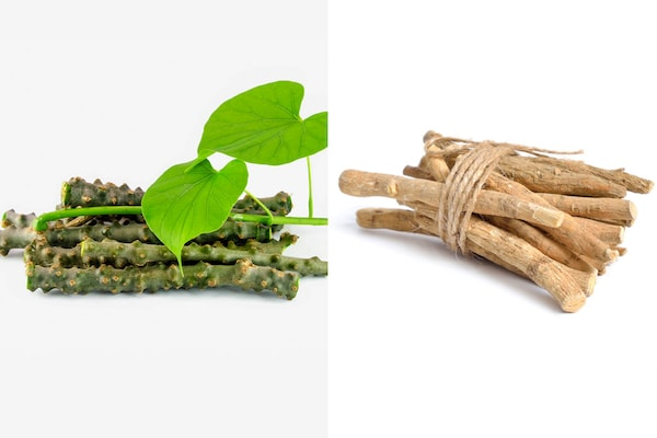 Ashwagandha, Giloy Helps to Fight-Off COVID-19 Infection