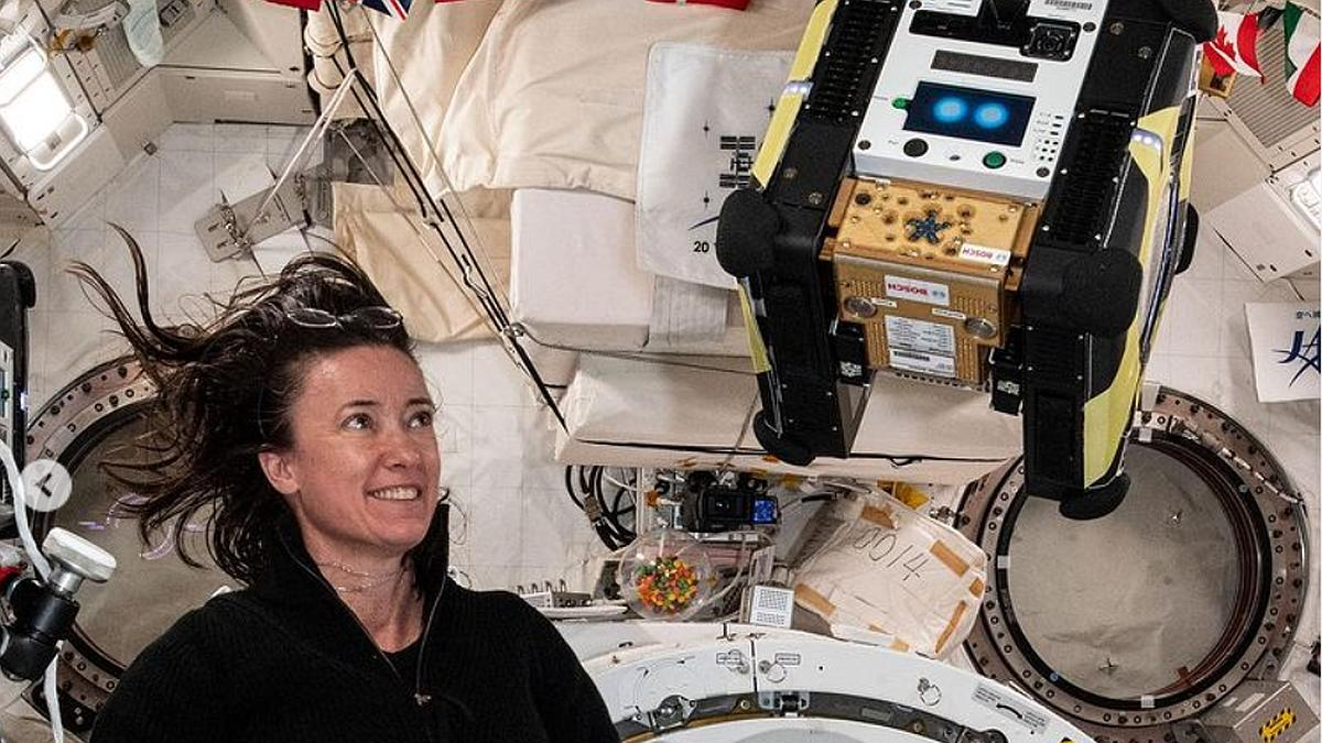 AstroBee Robots Will Help Astronauts With Chores on ISS