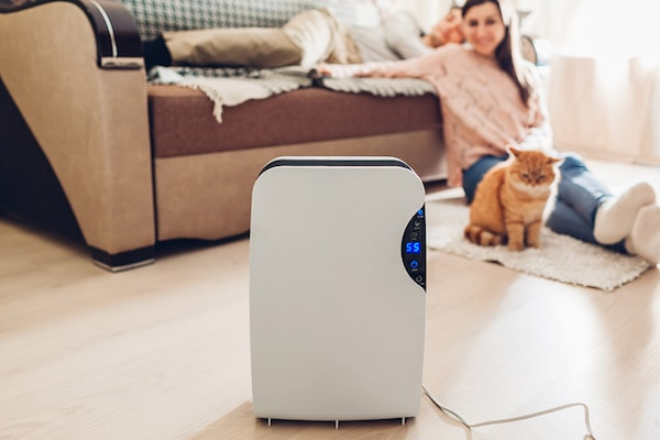 Best Air Purifiers for Your Home : Price, Reviews & Buying Guide