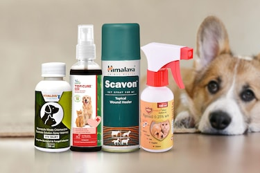 Best Anti-Bacterial Sprays For Your Pets To Keep That Itch Away