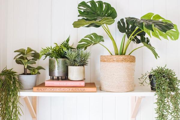 Best Artificial Plants: A Pop Of Green Indoors