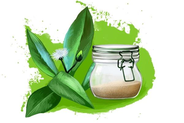 Bhringraj Powder For Hair: For Softer And Lustrous Hair