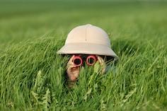 Best Binoculars: Peeking Views And Photos