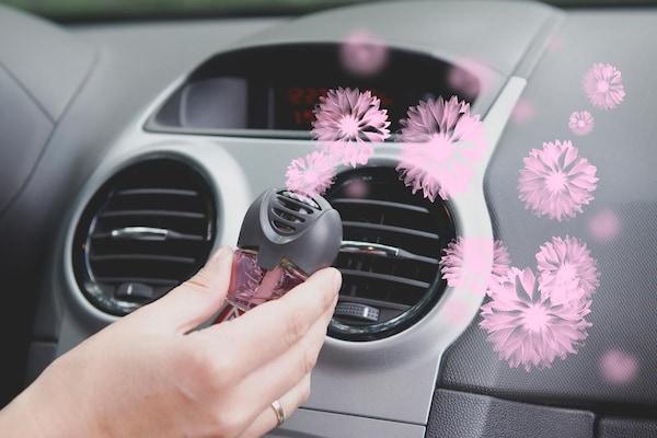 Best Car Air Fresheners in India