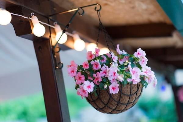 Attractive Hanging Planters For Balconies, Terraces