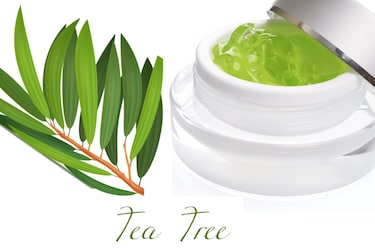 Tea Tree Face Gels: Time To Foster Naturally Glowing Skin