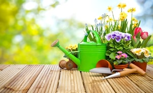 Gardening Equipment: Buy Useful Gardening Tools Online