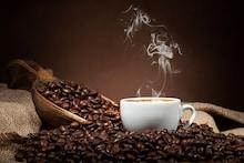 Best Organic Coffee Brands in India