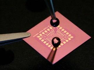 Scientists Seeking to Develop Biosensors to Fight Illness