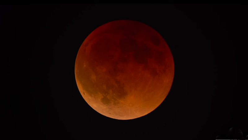 Blood Moon Blood Moon
