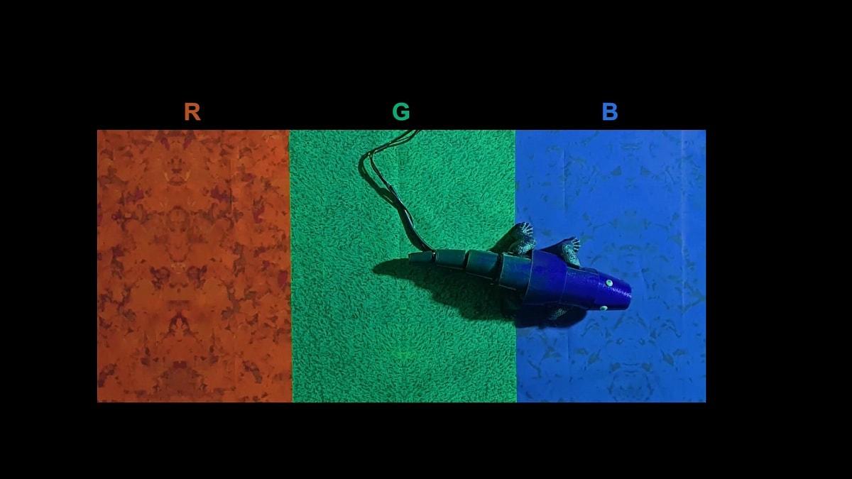 Chameleon_robot_1628765334467.jpg