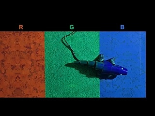 Chameleon-Inspired Robot That Can Change Colour Instantly to Adapt to Its Surroundings
