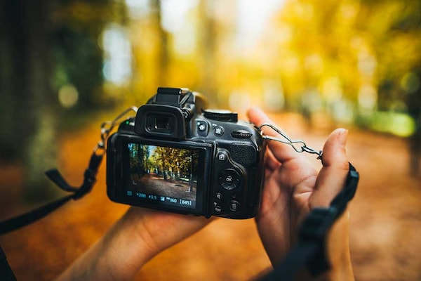 Best DSLR Cameras For Beginners: Which One To Buy And Features To Look For