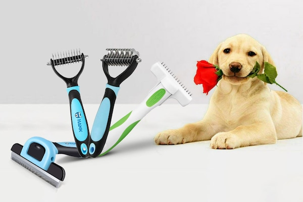 Best Deshedding Trimmers For Dogs: For An Itch Free Fur