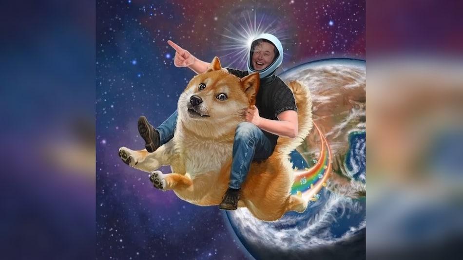 एलन मस्क का ट्विटर फॉलोअर्स से सवाल, Tesla क्या Dogecoin को पेमेंट के रूप में स्वीकार करे?
