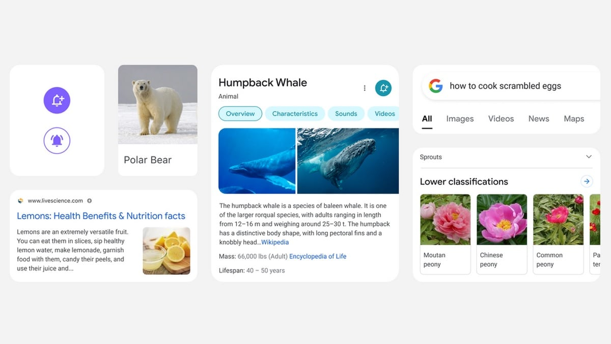 Google Rolls Out Redesigned Mobile Search Pages