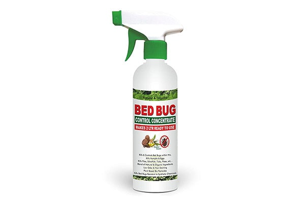 Green Dragons Natural Organic Bed Bug Control Concentrate Makes 1614019616121