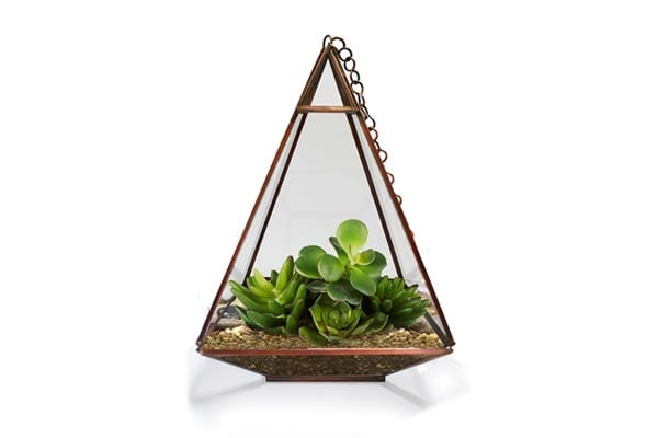 Trust Basket Triangular Tower Terrarium for Small Indoor Plants
