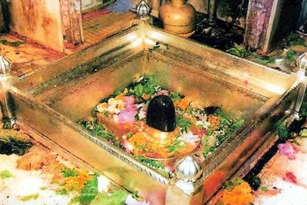 Kashi Vishwanath Uttar Pradesh 600 1556881952100