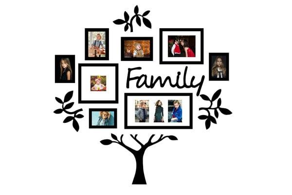 Paper Plane Design 13 Piece Family Tree Set 1611291310131