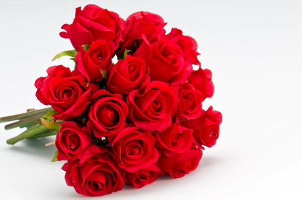 Rose Flowers 1555322618065