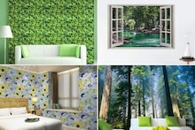 Best Nature-Inspired Wallpapers