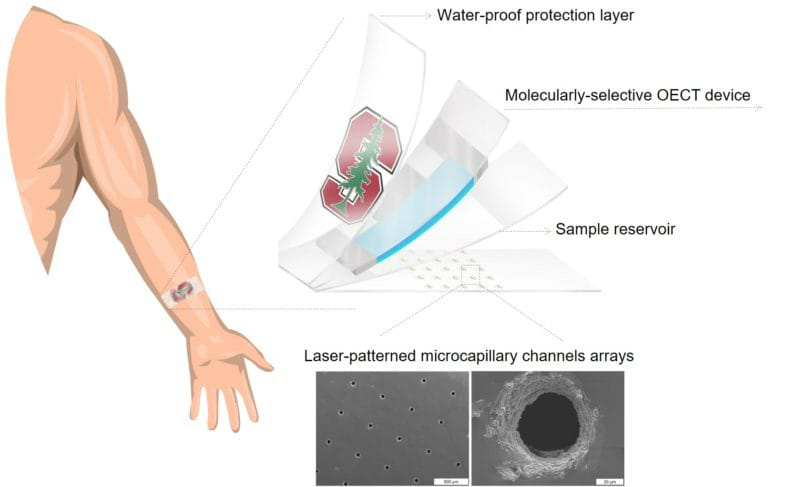 New Wearable Patch Can Detect Stress Level From Sweat