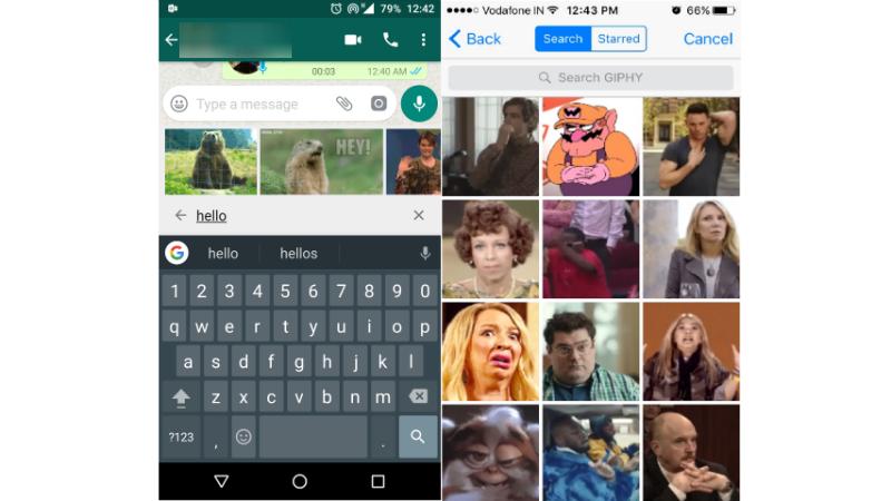 WhatsApp GIF Search WhatsApp GIF Search