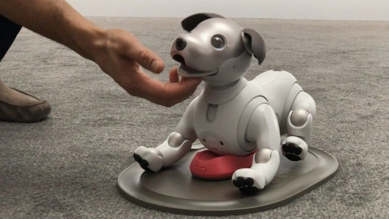 aibo washington post Aibo