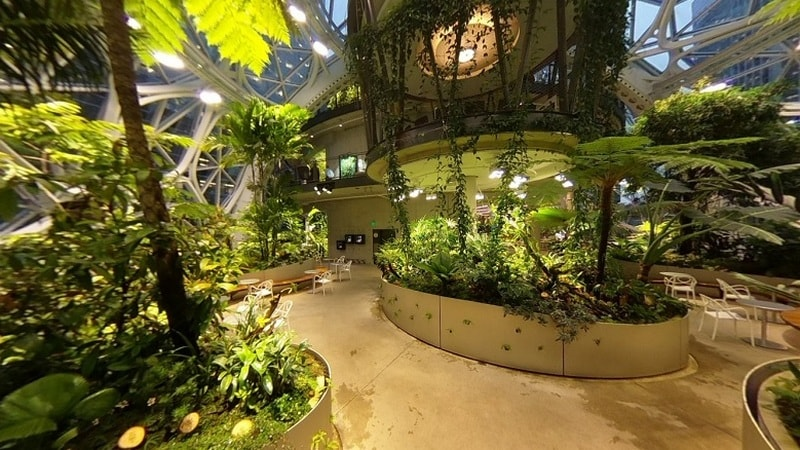 Amazon Opens Plant-Filled 'The Spheres' Buildings