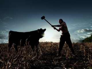Amazon Prime Video Censorship Evolves With an 'Indian Version' of American Gods