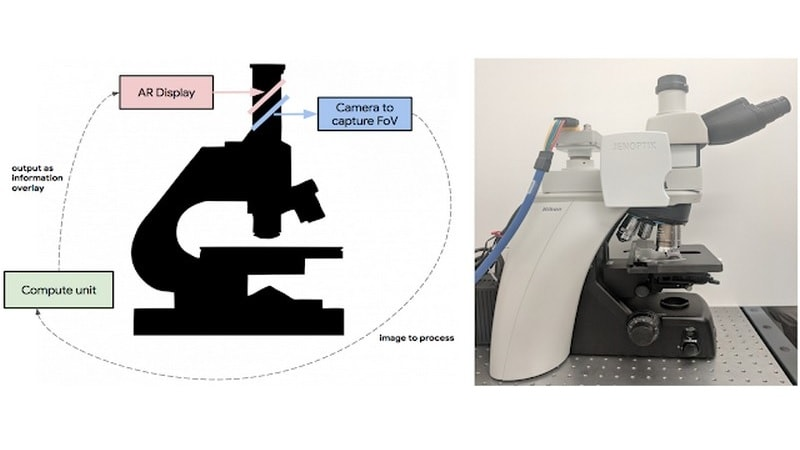 Google Researchers Develop an AR Microscope for Cancer Detection