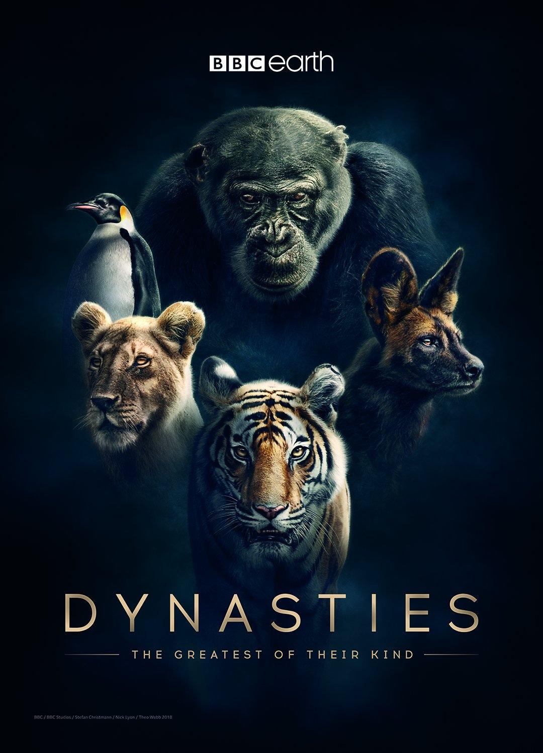 bbc dynasties poster BBC Dynasties poster