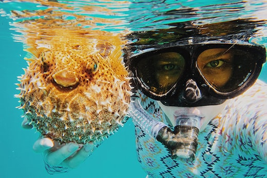 World's 5 Best Scuba Diving Sites, When to go and what to expect!