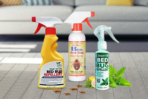 Best Sprays For Bed Bugs