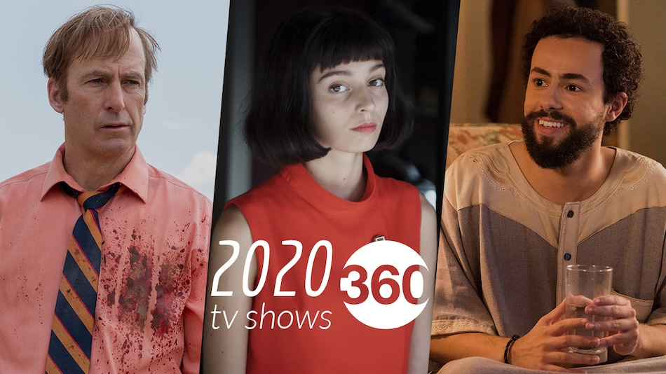 The 10 Best Web Series and TV Shows of 2020