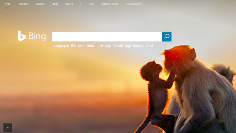 Microsoft Bing Rewards Comes to the UK, Will Give Points to Use Its Search Engine