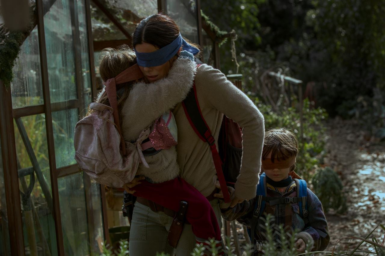 Netflix Warns Against People Doing 'Bird Box Challenge'