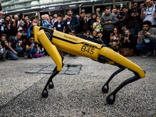 Robots 'Not Evil' Says Boston Dynamics as Humanoids Go Viral