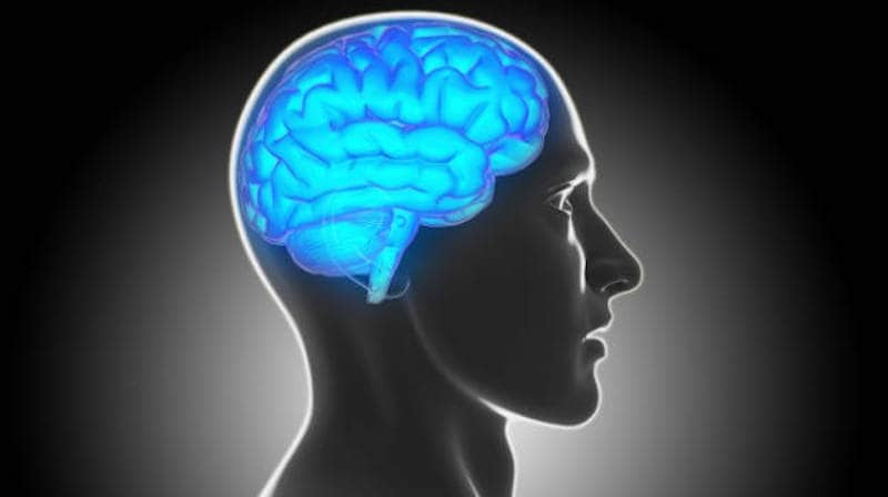 New Study Shows Brain Training Programmes Not Associated With Benefits of Cognition